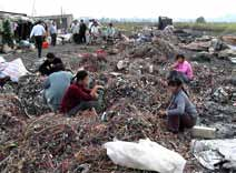 E-waste reclamation