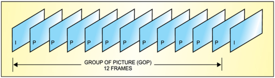 Fig. 4: Group of pictures