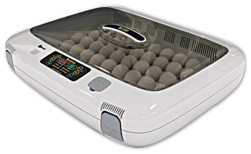 Digital egg incubator with USB connection