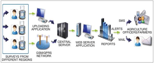 e-Pest surveillance architecture
