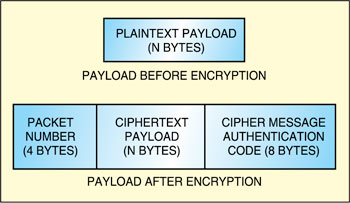 Fig. 5: Encrypted payload format in counter with cipher block chaining-MAC mode of AES