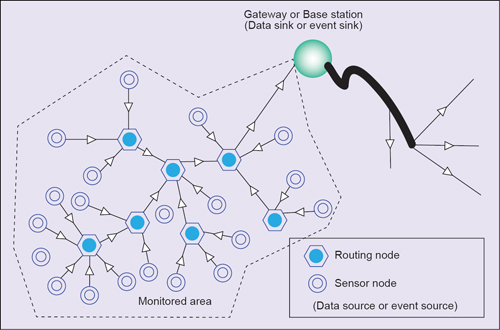 Fig. 1: Monitored area with wsn network