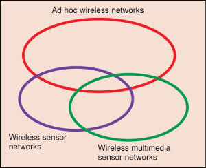 Fig. 1: Classification of different types of wireless networks