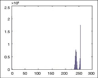 Fig. 7: Histogram of bright image