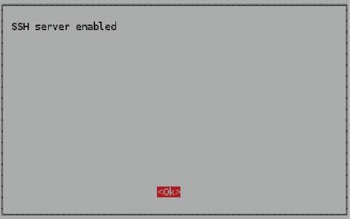Fig. 5: SSH server-enabled confirmation