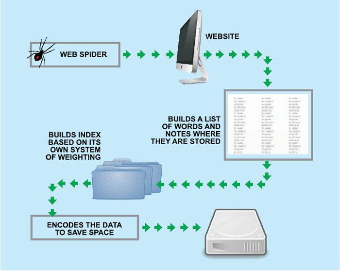 Fig. 2: How spider software works