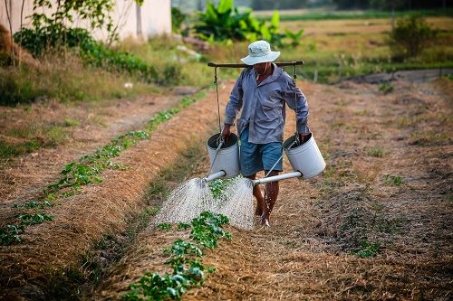 SmartRisk Application enables smart agro decisions