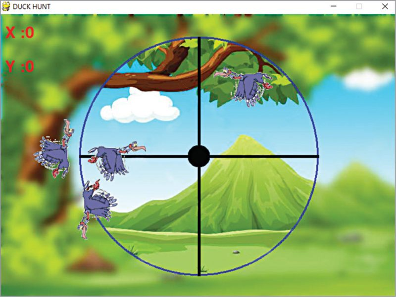 Screenshot of the duck hunt game