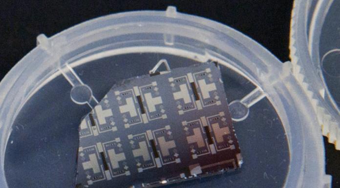 synaptic transistors