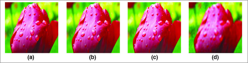 (a) Original image and (b)-(d) compressed versions using DCT