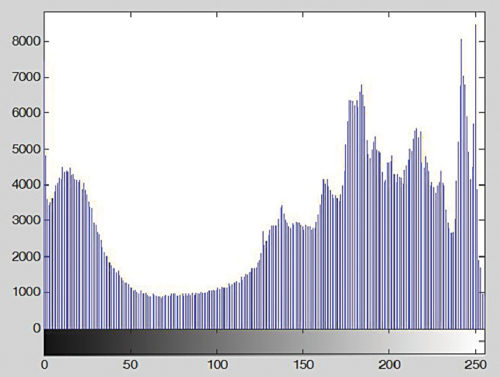 Histogram of image Penguins_grey.jpg generated using the imhist function