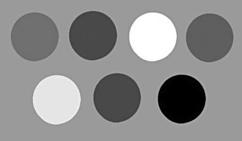 RGB image in Fig. 11 converted into grayscale image