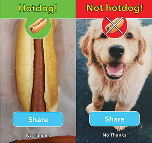 Screenshot of Not Hotdog app